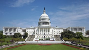 Newcomer Veterans Highlight 114th Congress