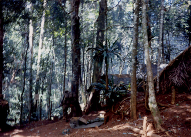 An unidentified Montagnard of SOG's top secret B Company stands next to enemy caches in an enemy base camp deep inside Laos during Operation Tailwind in Sept. 1970. On the right are several of the enemy structures where SOG demolition experts and A-1 Douglas Skyraiders destroyed more than nine tons of rice, an 81mm mortar, and four trucks before escaping with a large amount of NVA documents, money, maps and code books. Enemy troops were so surprised by the B Company attack on their base camp deep in Laos, that they left food in pots cooking over open fires after brief skirmishes with SOG men. (Photo courtesy of Gene McCarley)