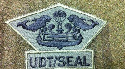 ROK (South Korea) UDT/SEAL training footage
