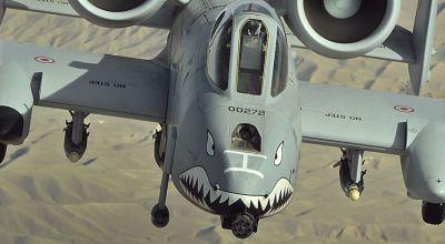 The A-10 Warthog and Hawg culture