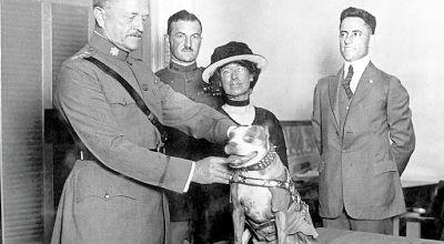 Sergeant Stubby: Original dog of war