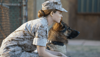 Movie Review: 'Megan Leavey' is a solid love story about a Marine and her dog