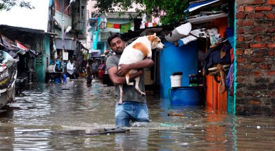 A man carries a dog and wades through a flooded street in Chennai, in the southern Indian state of Tamil Nadu, Wednesday, Dec. 2, 2015. Weeks of torrential rains have forced the airport in the state capital Chennai to close and have cut off several roads and highways, leaving tens of thousands of people stranded in their homes, government officials said Wednesday. | AP Photo