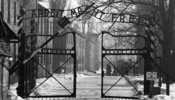 China's concentration camps: Auschwitz 2.0 or a solution against extremism?
