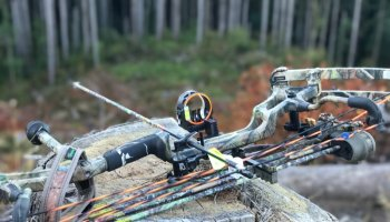Photo of the day: Bowhunting in Washington state