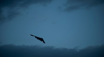 A B-2 Spirit from the 13th Bomb Squadron, Whiteman Air Force Base, Missouri, banks over the flightline at Nellis Air Force Base, Nevada, during a Red Flag 14-1 night training mission on January 29, 2014. (U.S. Air Force photo by Airman 1st Class Joshua Kleinholz)