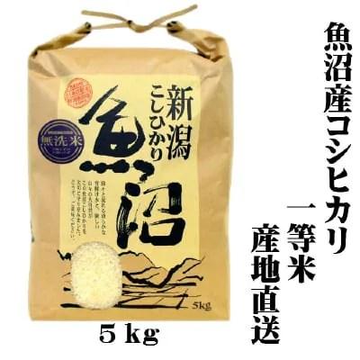 【新米/一等米】/送料無料/令和2年産/魚沼産コシヒカリ/無洗米/5㎏