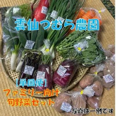 【ファミリー向け】旬野菜セット/ 雲仙つむら農園 【送料無料】※一部地域を除きます