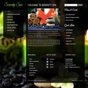 wordpress-spa-theme