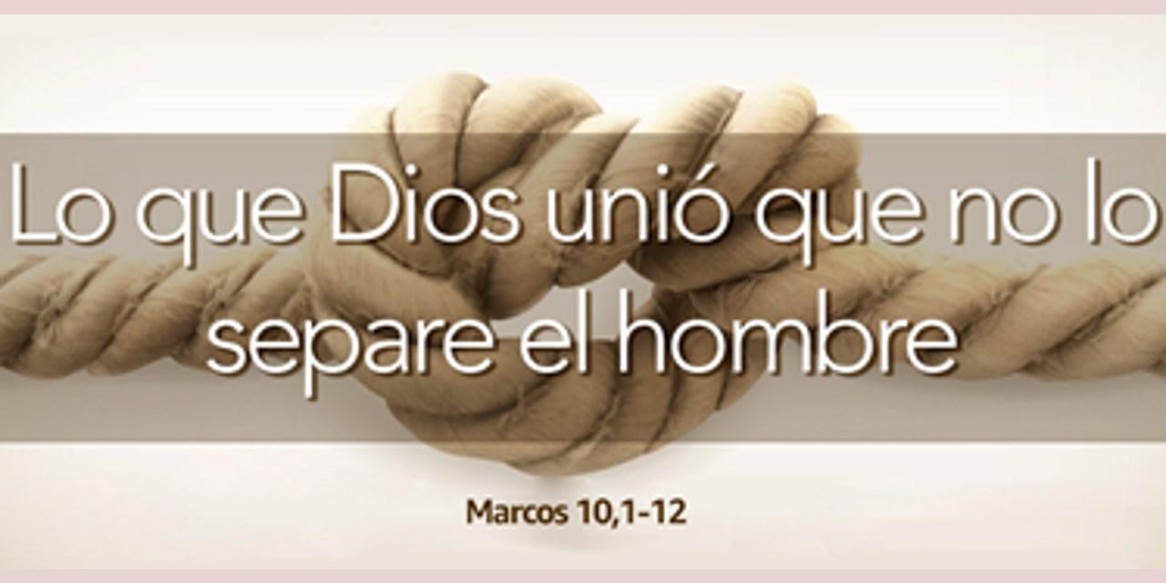 EL AMOR, POR ENCIMA DE TODO. XXVII DOMINGO T.O.