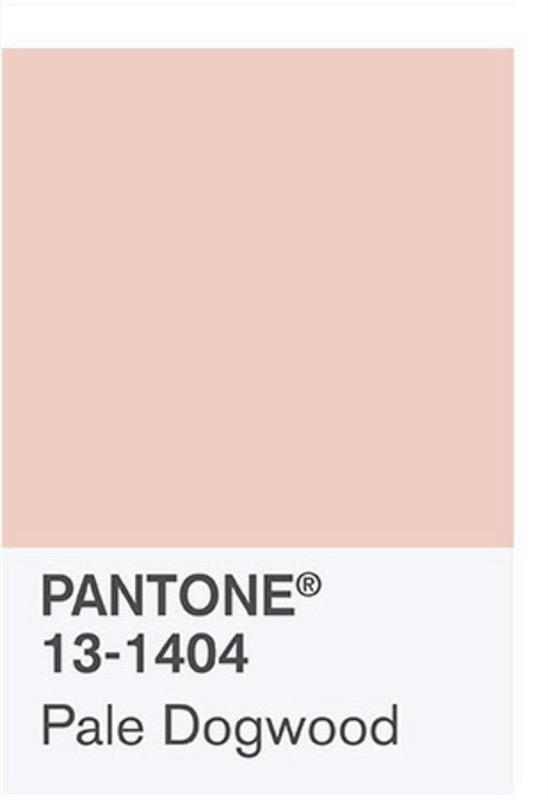 ClioMakeUp-millennial-pink-rosa-primavera-2017-abbinamenti-outfit-sfilate-look-accessori-8