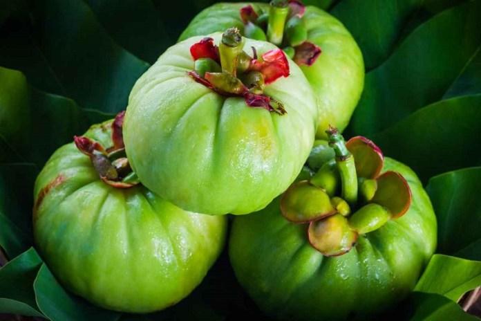 cliomakeup-natural-mojo-garcinia-cambogia-7