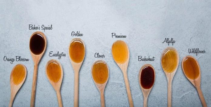cliomakeup-miele-per-pelle-capelli-4-tipi-di-miele