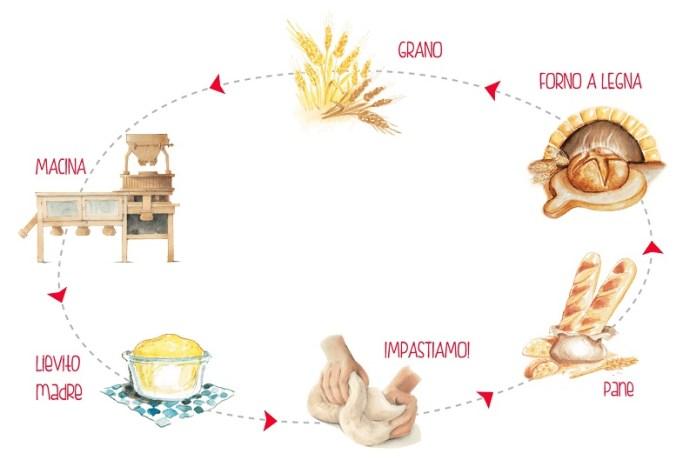 cliomakeup-4-veleni-bianchi-produzione-farina-9