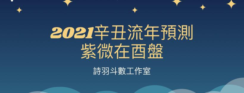 2021辛丑流年預測 - 紫微在酉盤