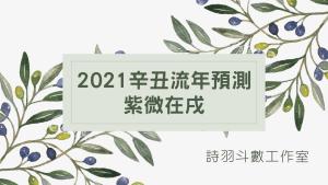2021辛丑流年預測 - 紫微在戌盤
