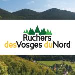 Ruchers des Vosges du Nord