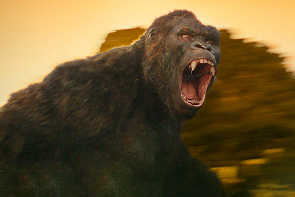 《Kong: Skull Island》最新電影片段釋出