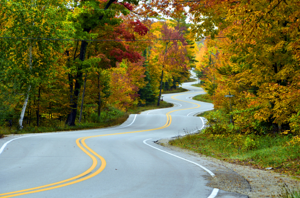 SaaS Ventures takes the investment road less traveled