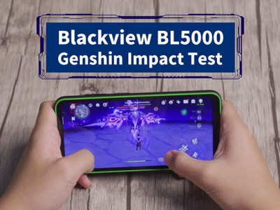 Genshin Impact Test