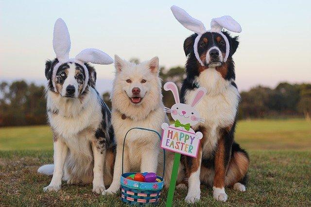 Easter Schedule 2021