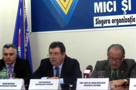 CNIPMMR solicita un departament dedicat IMM-urilor in noul Guvern