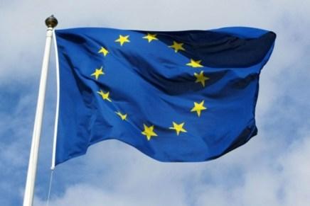 Programul mediului de afaceri pentru alegerile europarlamentare
