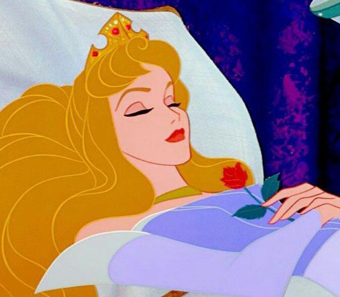Afbeeldingsresultaat voor doornroosje slapen