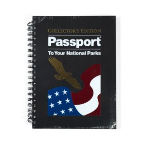 A gold eagle and American flag on a black Passport book cover.