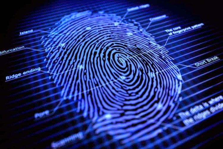 fingerprints-CNN7