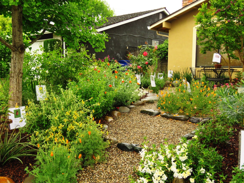 Front yard garden. Credit Jim Wadsworth.