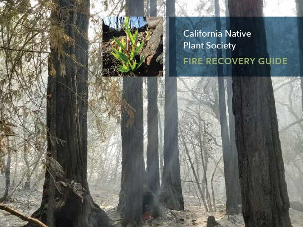 CNPS Fire Recovery Guide cover