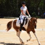 Local riders place third in dressage competition
