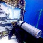 Kittiwake museum exhibit to open under the sea