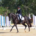 Cayman dressage teams named for Caribbean competition