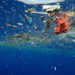 Gallery screens film on environmental impact of plastic