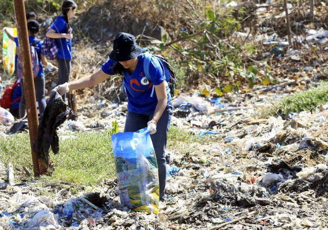 A volunteer picks up trash in 2015 at Freedom Island, a marshland considered to be a sanctuary for birds, fish and mangroves in a coastal area of Las Pinas City, near Manila, Philippines. (CNS/Reuters)