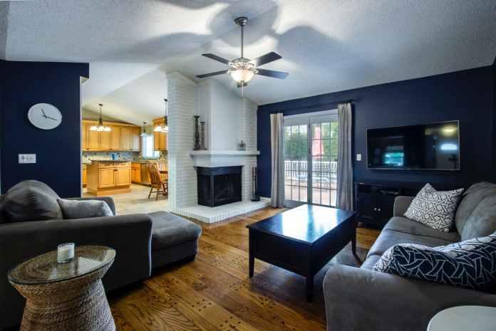 Contrast Living room Ideas