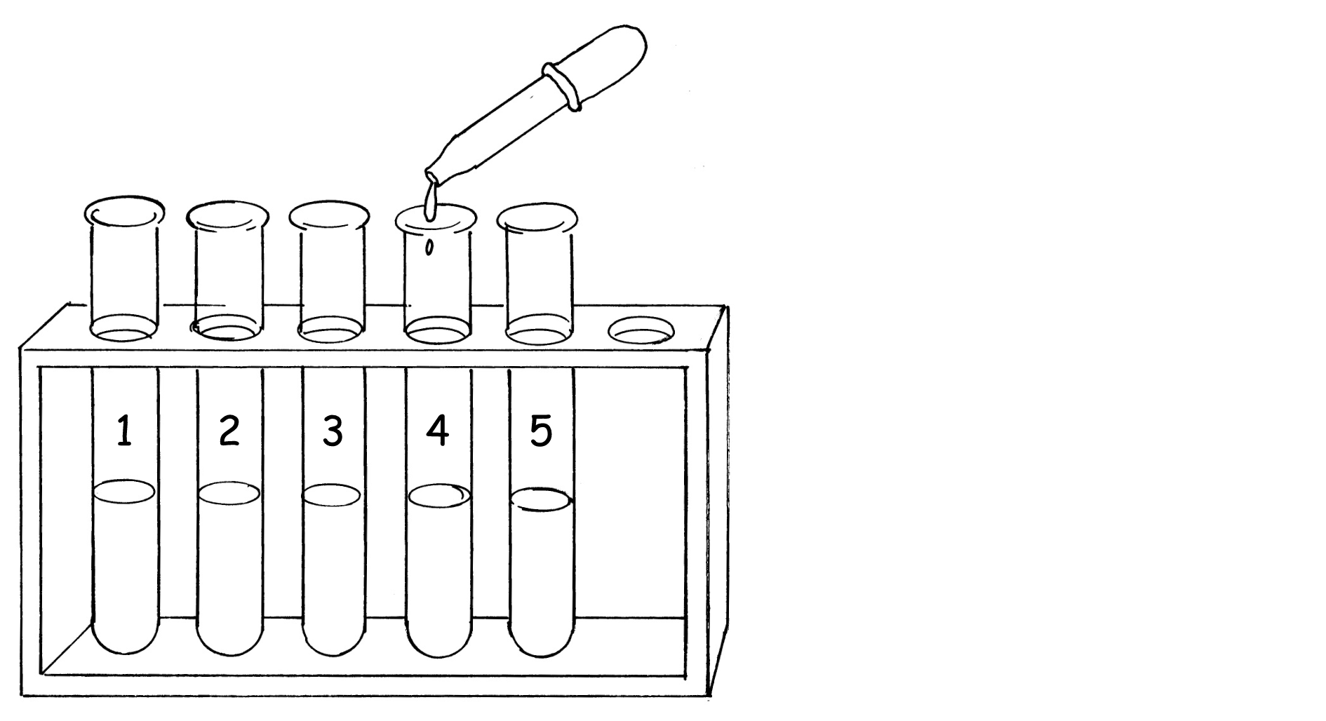 Test Tube Diagram Sketch Coloring Page