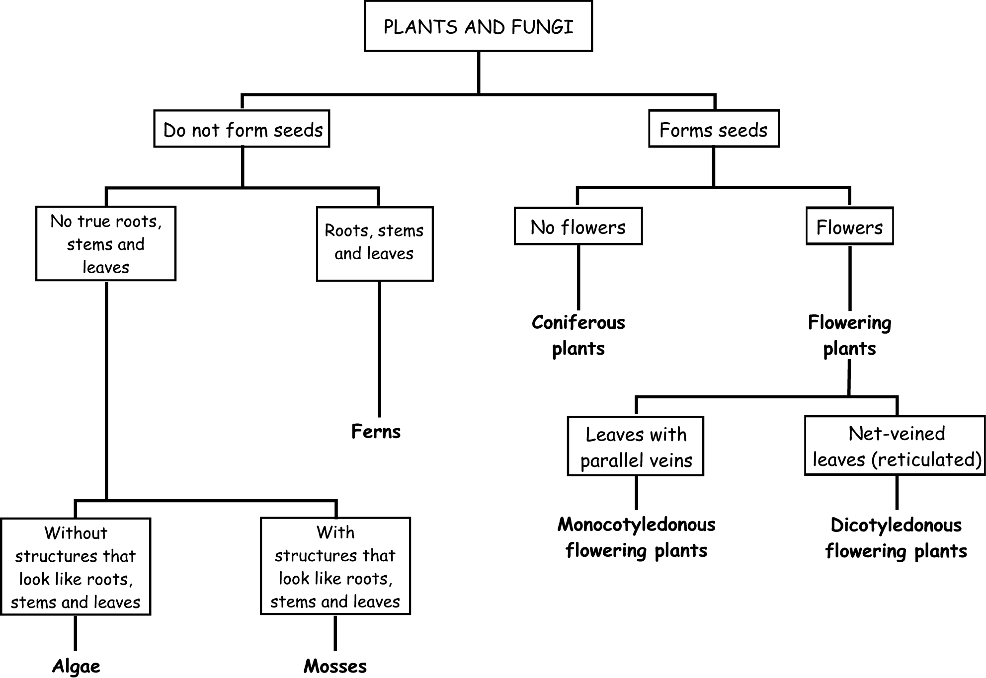 To Classify Plants According To Their Characteristics