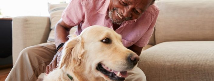 Estate Planning Including Your Pet