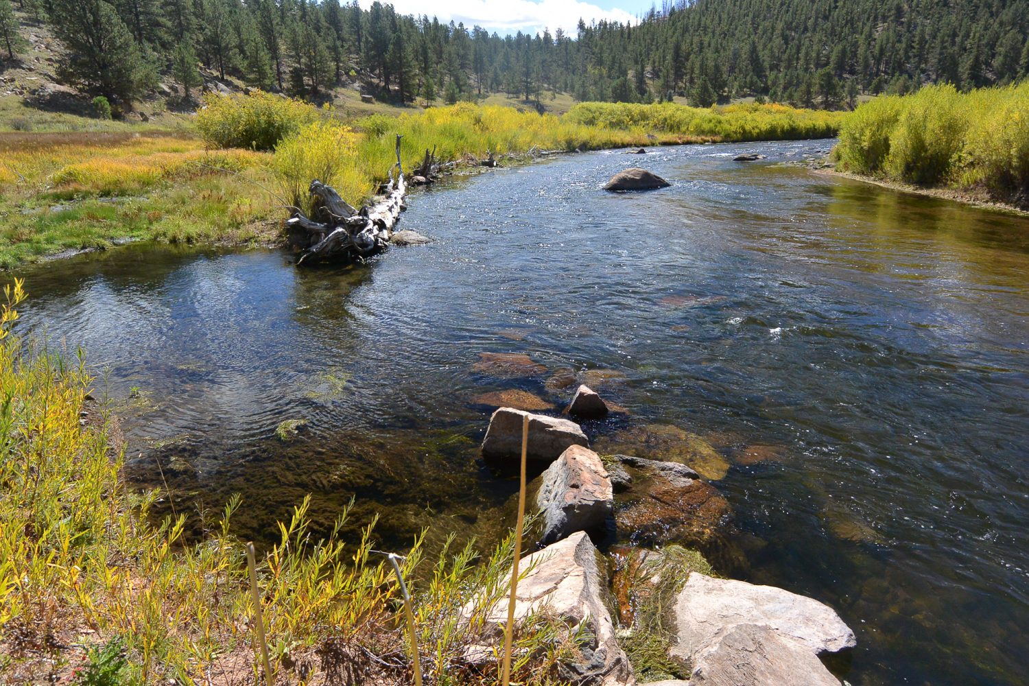 J-Hook structure in the Upper South Platte River