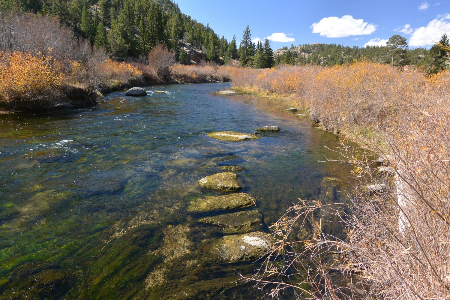 Upper South Platte River with J-Hook rock structure