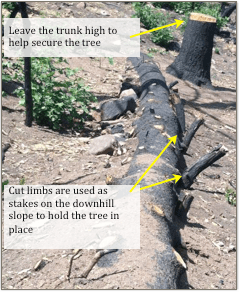Log Erosion Barrier with instructions