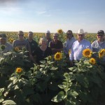 Southern Colorado producers on a soil health tour in South Dakota in Sunflower field