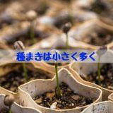 種まきは小さく多く