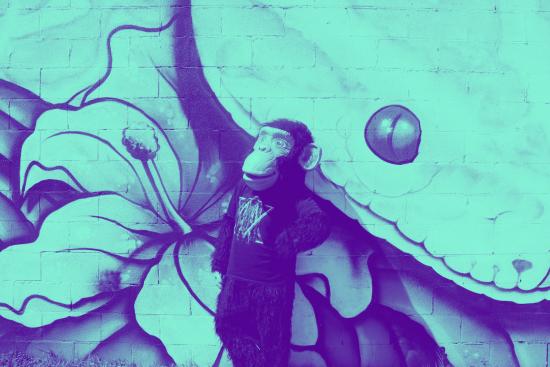 chimp mural