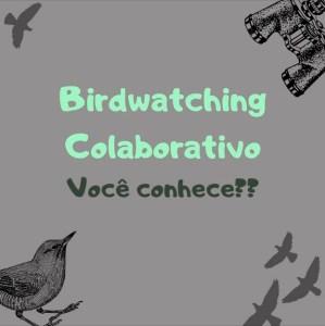 BIRDWATCHING COLABORATIVO