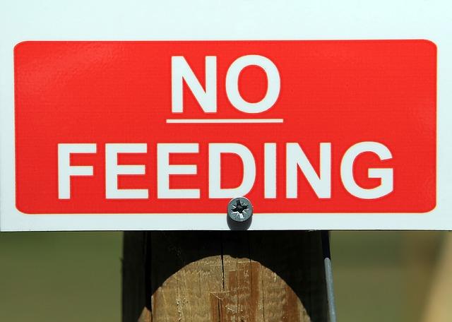 Not-to-eat-Liste, was solltest du essen und was vermeiden