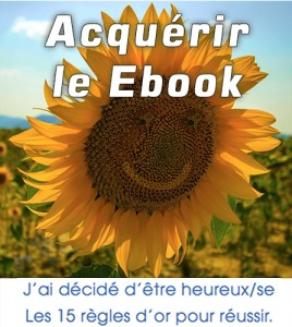 Encart-ebook